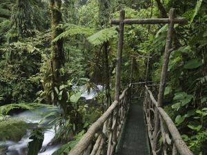 Trail in Cloud Forest, La Paz Waterfall Gardens, Central Valley, Costa Rica by Rolf Nussbaumer