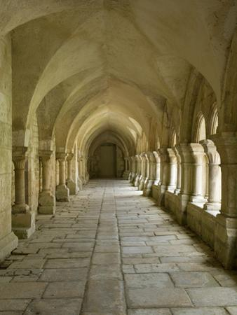 Cloisters, Fontenay Abbey, UNESCO World Heritage Site, Burgundy, France, Europe by Rolf Richardson