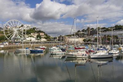 Harbour, Torquay, Devon. England, United Kingdom, Europe by Rolf Richardson
