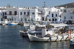 Naoussa Harbour, Paros, Cyclades, Greek Islands, Greece by Rolf Richardson