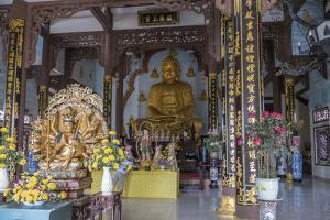 Phap Lam Pagoda, Danang, Vietnam, Indochina, Southeast Asia, Asia by Rolf Richardson