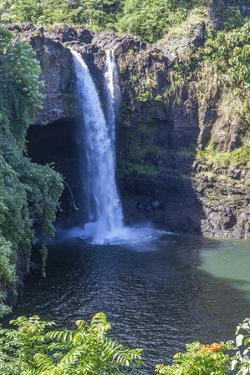 Rainbow Falls, Hilo, Hawaii Island (Big Island), Hawaii, United States of America, Pacific by Rolf Richardson