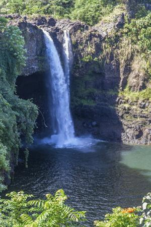 Rainbow Falls, Hilo, Hawaii Island (Big Island), Hawaii, United States of America, Pacific by Rolf Richardson