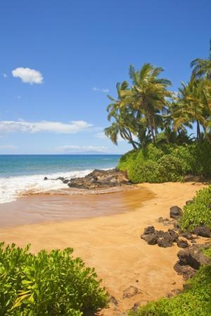 Chang's Beach on Maui by Ron Dahlquist
