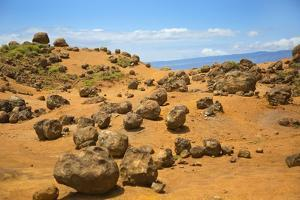 Keahiakawelo, also known as Garden of the Gods, Lanai, Hawaii by Ron Dahlquist