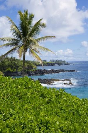 Kipahulu to Hana Coastline, Maui, Hawaii by Ron Dahlquist