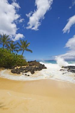 Makena Cove, also known as Secret Beach and Wedding Beach, Maui, Hawaii by Ron Dahlquist