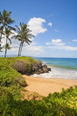 Secluded Po'Olenalena Beach on Maui by Ron Dahlquist