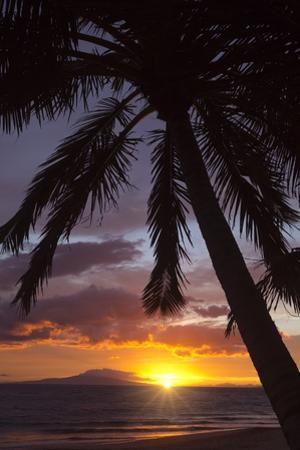 Sunset at Keawekapu Beach, Wailea, Maui, Hawaii by Ron Dahlquist