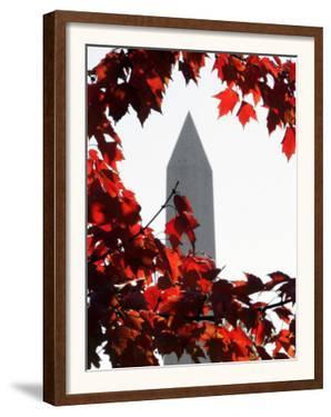 The Washington Monument Surrounded by the Brilliant Colored Leaves by Ron Edmonds