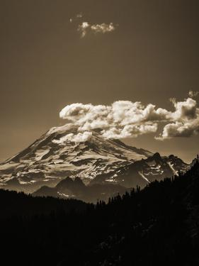 Scenic View Of Mt Rainier From The Pacific Crest Trail by Ron Koeberer