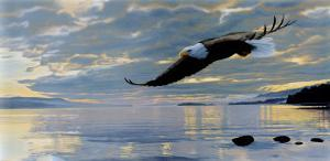 Dawn Flight by Ron Parker