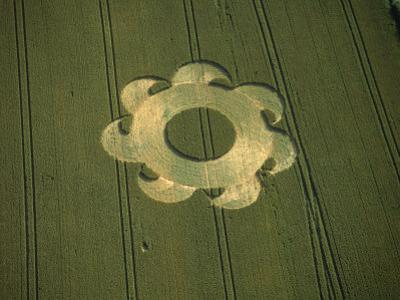 Crop Circle, Danebury, Hampshire, England by Ron Russell