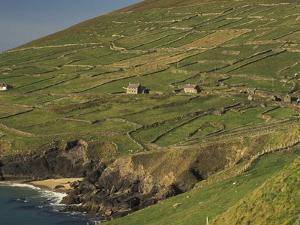 Farmhouses on Hill at Coast by Ron Sanford