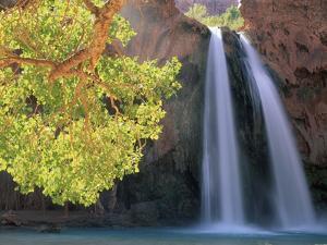 Havasu Falls by Ron Watts