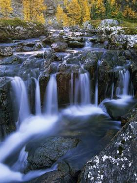 Lake O'Hara, Opabin Plateau, Cascade Lakes, Yoho National Park, British Columbia, Canada. by Ron Watts