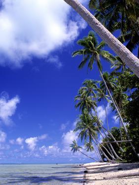 Tropical Island, Bora Bora by Ron Whitby Photography