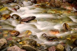 Colorful Rocks in a Rushing Mountain Stream. Glacier NP, Montana by Rona Schwarz
