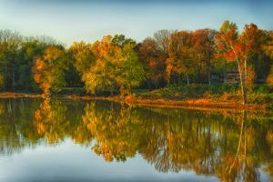 USA, Indiana, Autumn Trees Reflected in Wabash River by Rona Schwarz