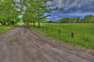 USA, Indiana. Ft. Ouiatenon Landscape by Rona Schwarz