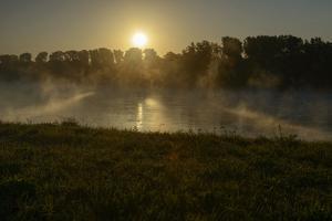River Landscape, the Rhine, Fog Mood, Sunrise, Speyer, Rhineland-Palatinate, Germany by Ronald Wittek