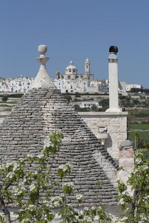 https://imgc.allpostersimages.com/img/posters/roof-of-traditional-trullo-with-locorotondo-in-distance-puglia-italy-europe_u-L-PQ8MSN0.jpg?artPerspective=n