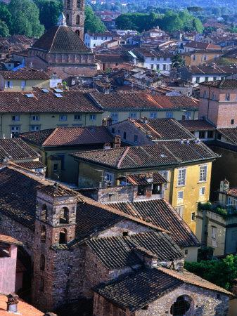 https://imgc.allpostersimages.com/img/posters/rooftops-and-buildings-of-town-lucca-italy_u-L-P3SH8H0.jpg?artPerspective=n