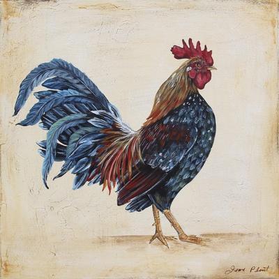https://imgc.allpostersimages.com/img/posters/rooster-c_u-L-Q1CAMGT0.jpg?artPerspective=n