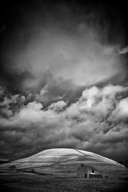 Sunlight On Hillside by Rory Garforth
