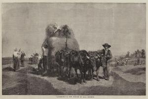 Haymaking by Rosa Bonheur