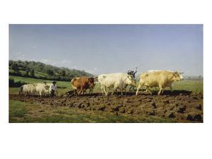 Ploughing in Nivernais, 1849 by Rosa Bonheur