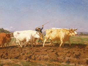 Ploughing in the Nivernais, 1850 by Rosa Bonheur