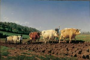 Ploughing in the Region of Nevers: Clearance by Rosa Bonheur