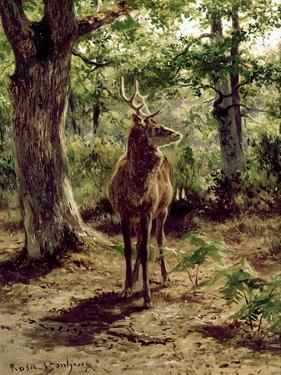 Stag on Alert in Wooded Clearing by Rosa Bonheur