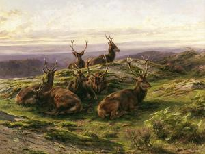 Stags at Rest by Rosa Bonheur
