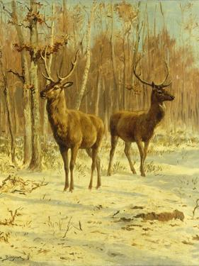 Two Stags in a Clearing in Winter by Rosa Bonheur