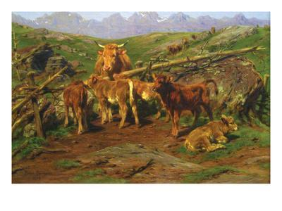 Weaning the Calves