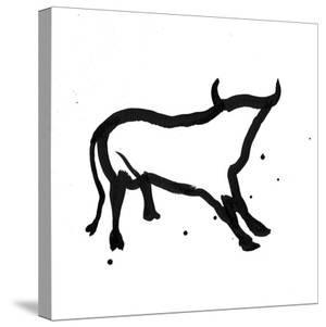 Ghost Bull by Rosa Mesa