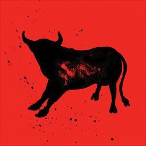 Pamplona Bull V by Rosa Mesa