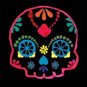 Sugar Skull Velvet III by Rosa Mesa