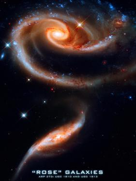 Rose Galaxies Hubble Space Photo Poster Print