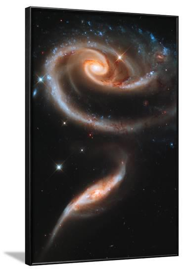 Rose Galaxy Hubble Space Photo Art Poster Print--Framed Poster