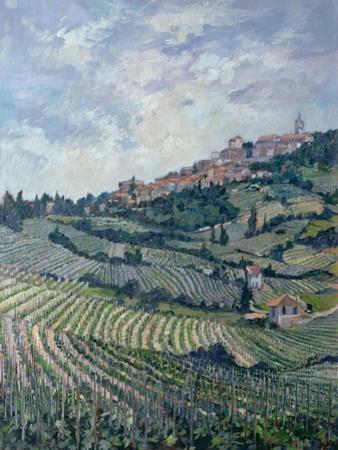 Vineyards, Tuscany