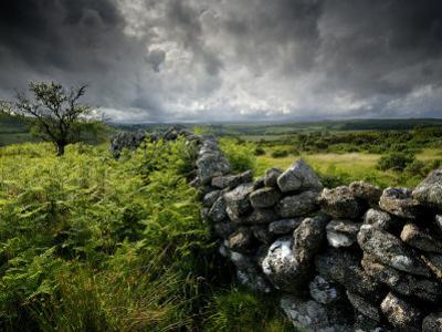 Dark Storm Clouds Above Stone Wall Near Combestone Tor, Devon, Dartmoor Np, UK by Ross Hoddinott