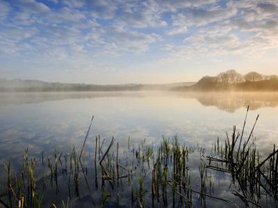 Lower Tamar Lake, North Devon Cornwall Border, UK by Ross Hoddinott