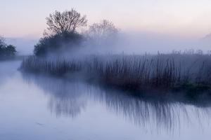 River Stour with Early Morning Mist and Frost, Near Wimborne Minster, Dorset, UK. April 2012 by Ross Hoddinott
