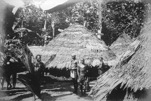 Round Houses of Natives at Timotu, Santa Cruz, 1892