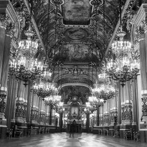 Rows of Chandeliers Hanging in the Grand Lobby of the Paris Opera House