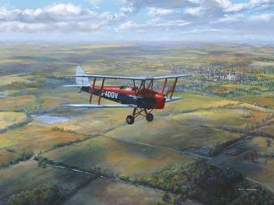 D.H. Tiger Moth by Roy Cross
