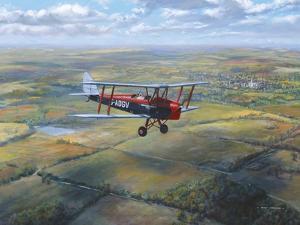D.H. Tiger Moth by Roy Cross